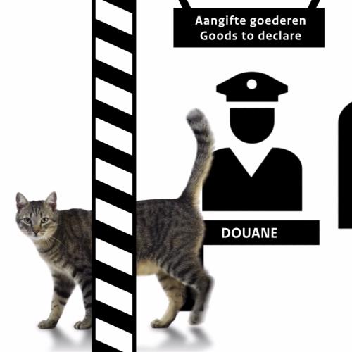 Huisdieren uit het buitenland